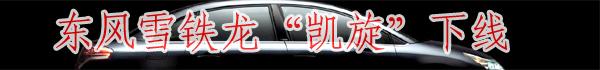 """专题:东风雪铁龙""""凯旋""""下线"""