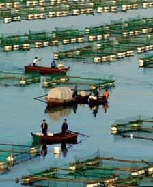 <b>中国海产品生产基地-威海</b>