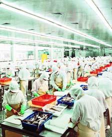 <b>东方海洋公司渔业深加工</b>