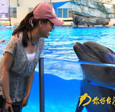 花莲:与鲸豚第一次亲密接触