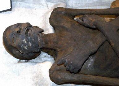 埃及三千余年的法老木乃伊回归故里图片
