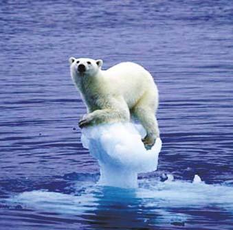 应对气候变化的全球行动