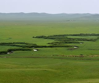 俯瞰乌拉盖九曲弯 河道蜿蜒如绿色飘带