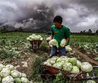 印尼火山持续喷发 民众山下淡定收菜