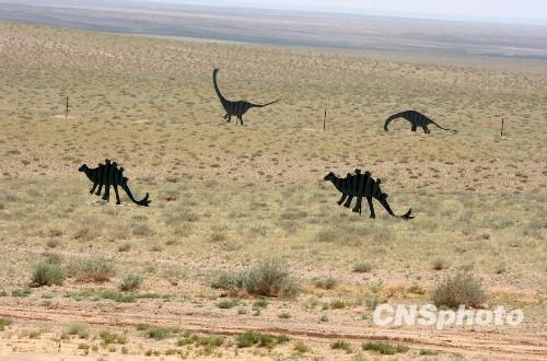 探访二连浩特 恐龙之乡