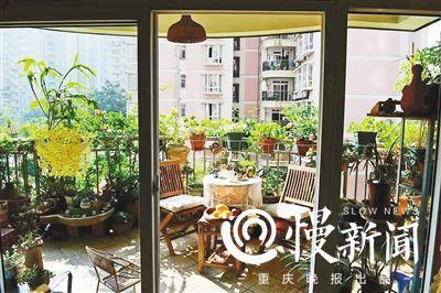 阳台成小氧吧植物园后花园